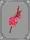 Red+Cherry+Blossom+Branch