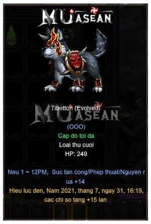 Hình ảnh Pet Muun Tibetton đã tiến hóa